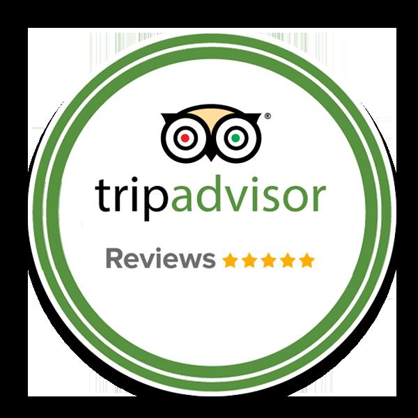 TripAdvisor Review logo